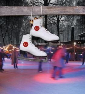 Dresdner Winter auf dem Konzertplatz Weißer Hirsch